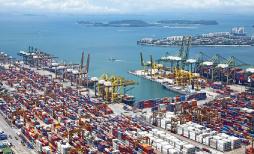 Sector Comercio Exterior