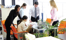 Servicios enfocados al Área Administrativa y Gerencial