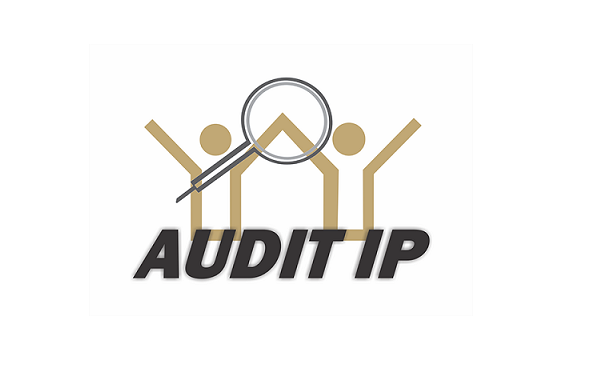 Audit IP | Software paraAuditorias | Audisis