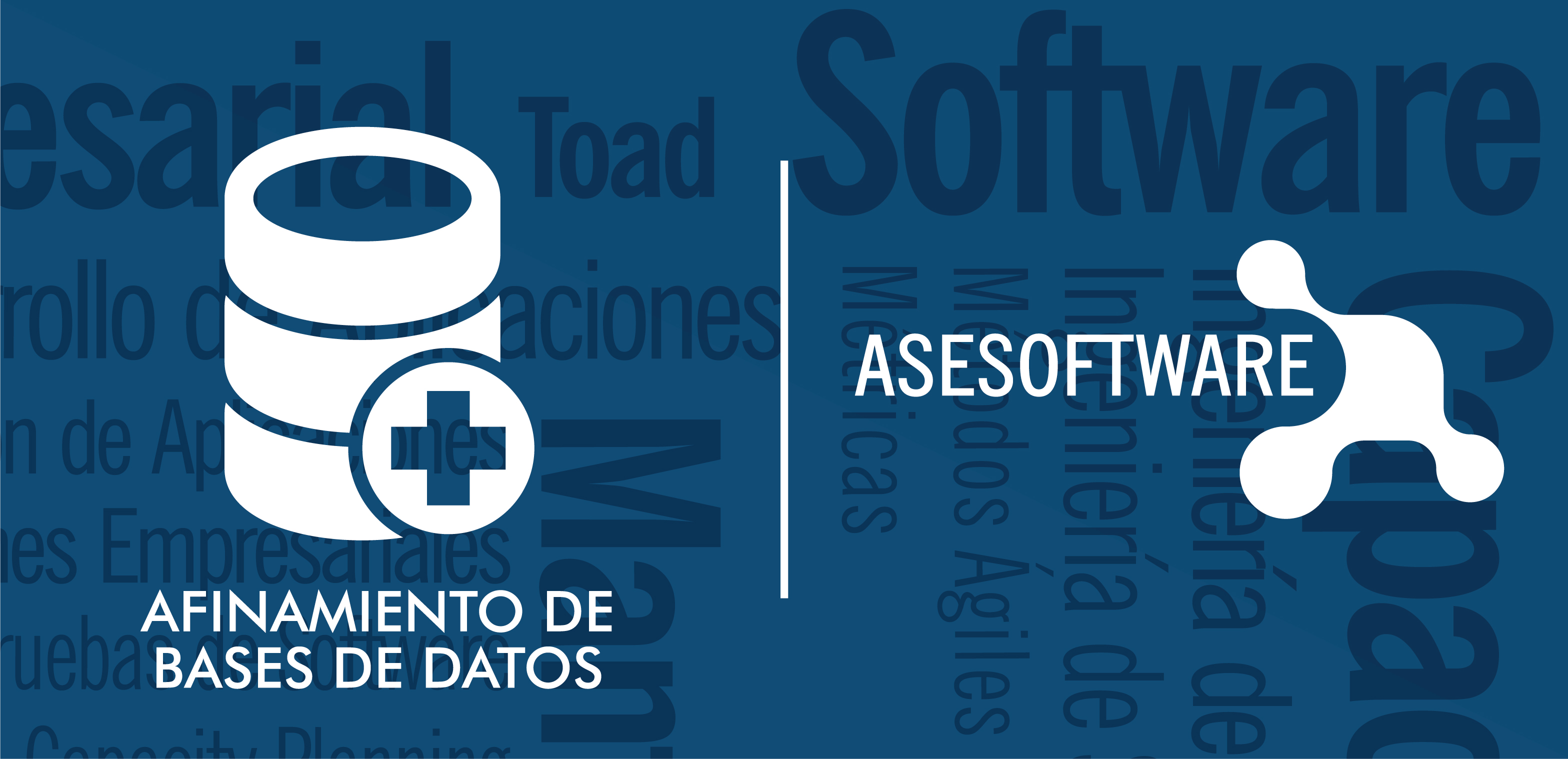 Afinamiento de BASES de DATOS y Aplicaciones | ASESOFTWARE