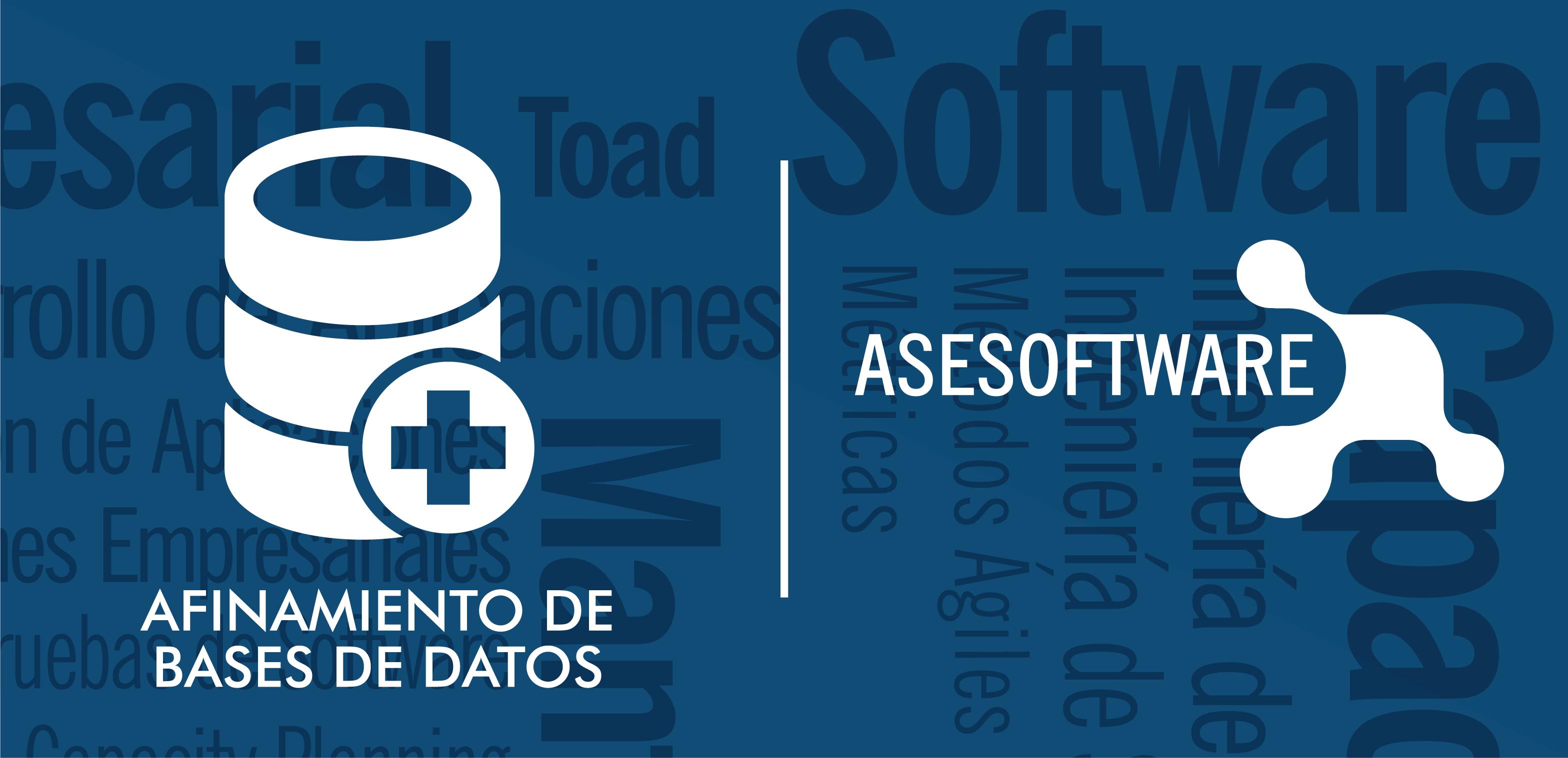 ASESOFTWARE S.A.S. - Afinamiento De Bases De Datos