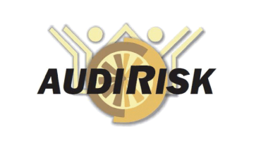 Software Auditoria Internas Externas | AUDIRISK WEB