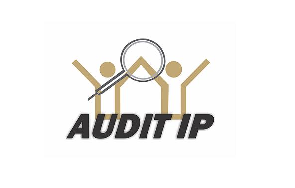 AUDIT IP - Software de Auditorias Efectuadas por Terceros con Planes De Mejoramiento Institucionales