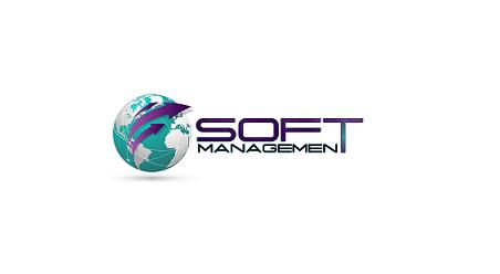 SoftManagement S.A.  - Testing & Aseguramiento de Calidad de Software