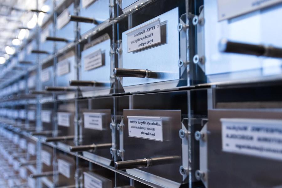 Gestión Documental | Manejo Electrónico de Documentos (Equipos, Dispositivos, Software)