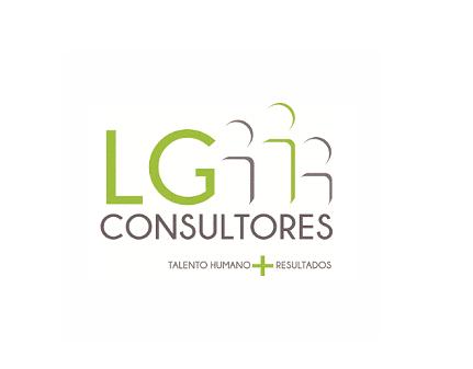 LG CONSULTORES