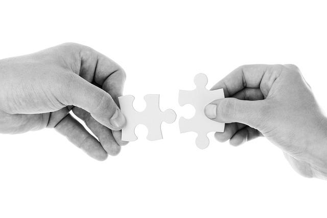 Desarrollo de Equipos de Alto Desempeño | Team Building